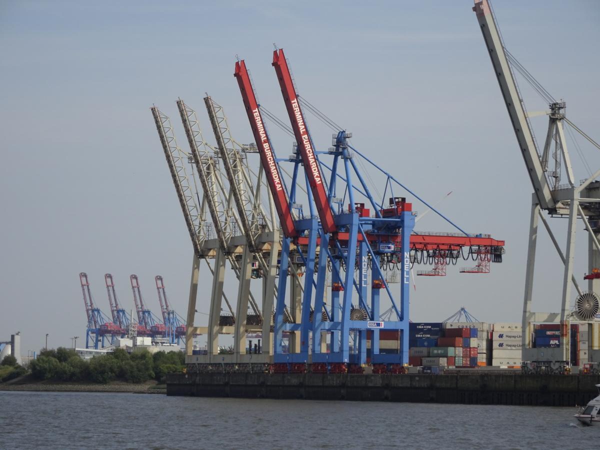 Hafengiraffen