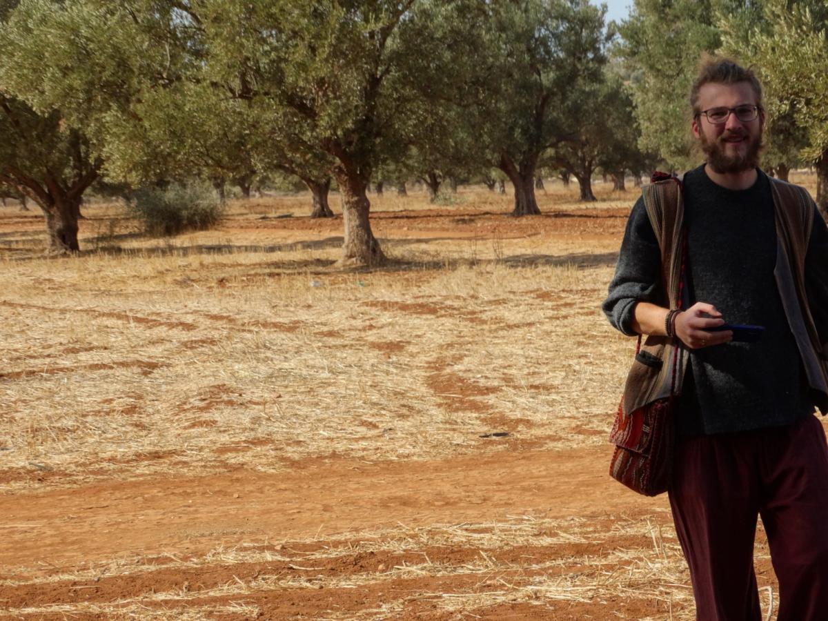 David vor Arganbäumen