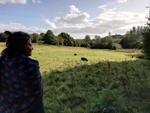 Klara mit Schafen