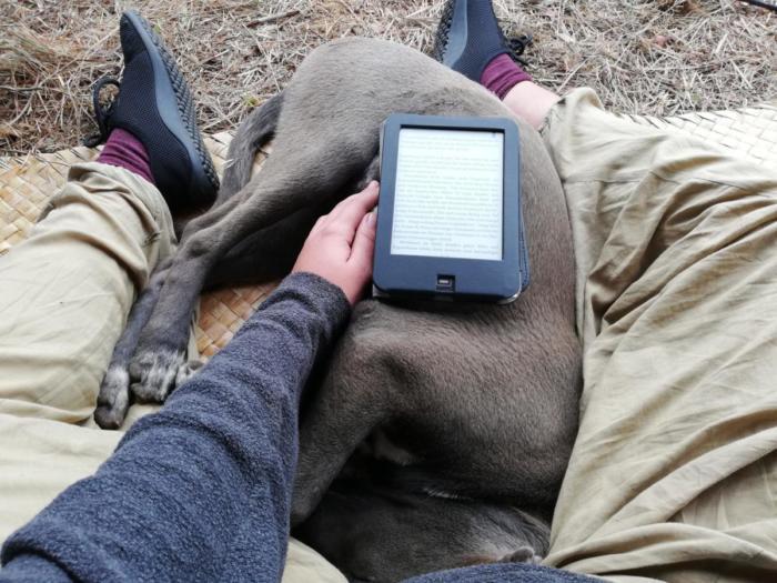 Lesen mit Hund